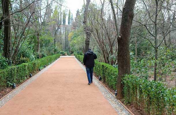 paseo-cipreses